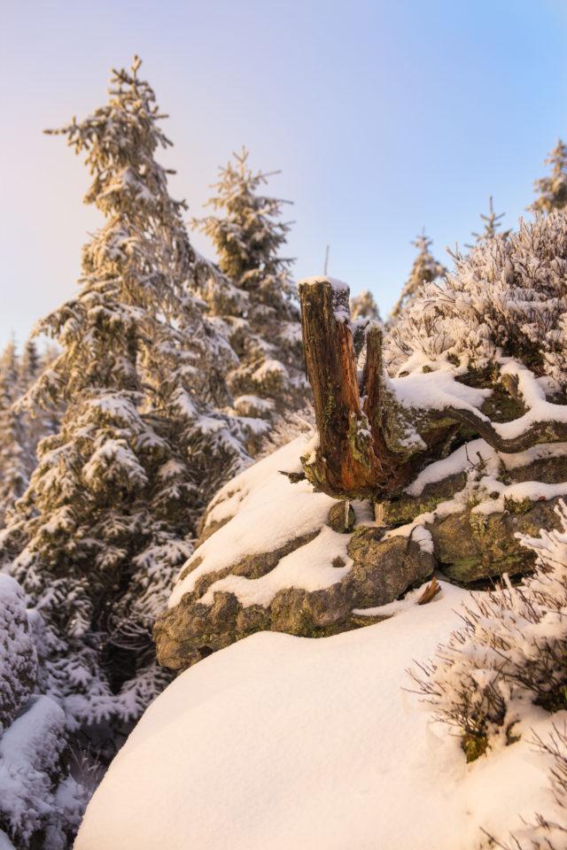 Nur wenige Zentimeter Schnee bedeckten die Felsen