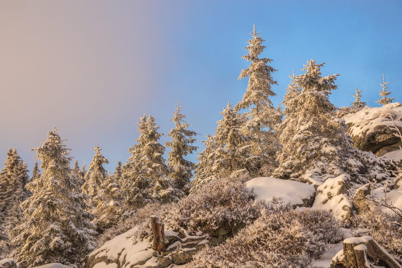 Winterstimmung am Goethefelsen